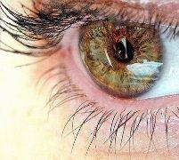 Диета для зоркости глаз